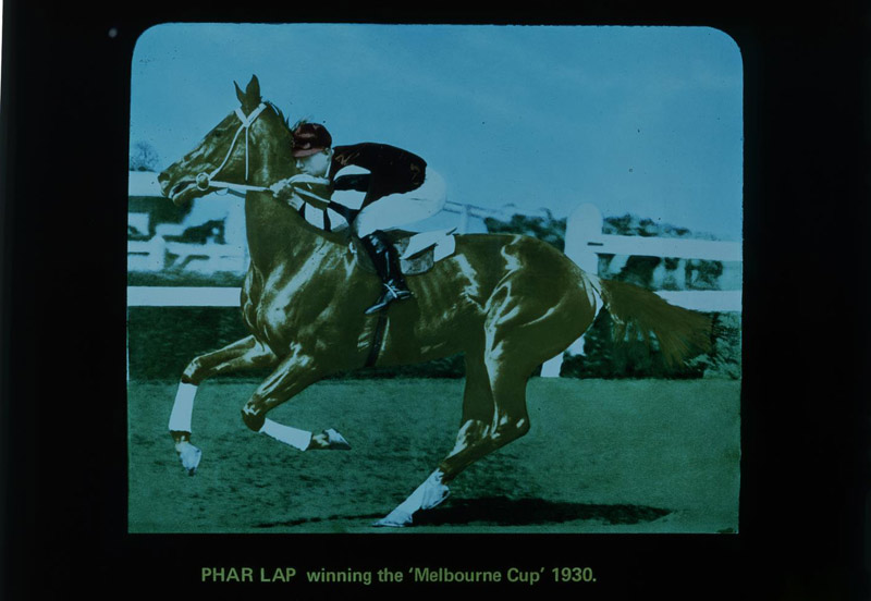 A photographic image of the colour transparency of Lot 15, Phar Lap. It is being sold as part of the Rose Stereograph Company collection in Australia.