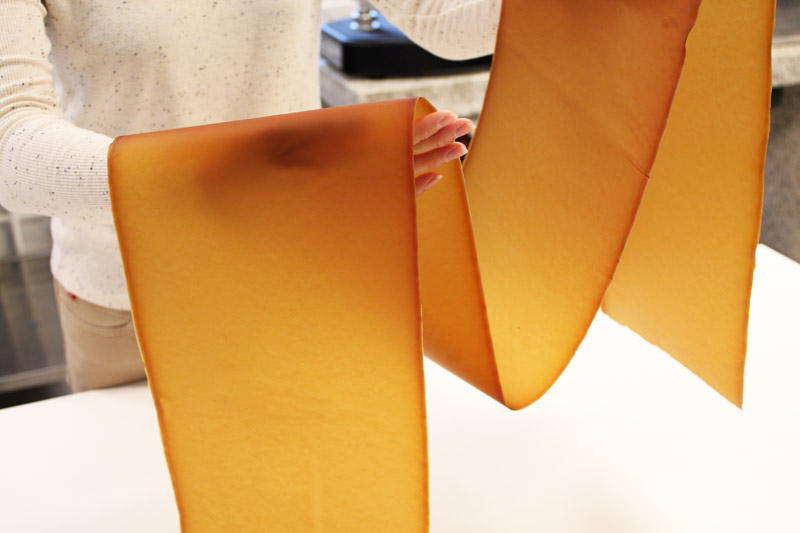 The VTT Technical Research Centre of Finland is producing mycelium leather sheets.