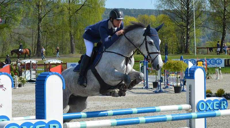 """""""A distance in a combination looks short or long depending on what happened before you arrived there. The riders need to interpret the course because it is a different test for every horse."""""""