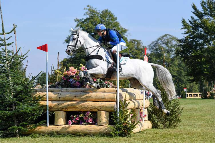 PSH Promise Me was the only stallion competing at Blenheim. He was ridden by Michael Jackson in the CCI4*-L.