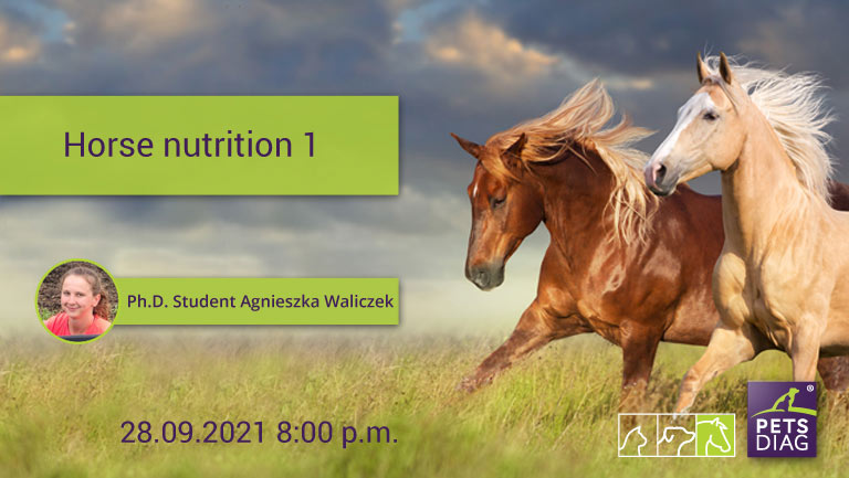 A free webinar is being presented by equine nutrition specialist Agnieszka Waliczek and hosted by PetsDiag, a company that has developed a test for Elemental Hair Analysis for Animals (EHAA), which includes an equine test.
