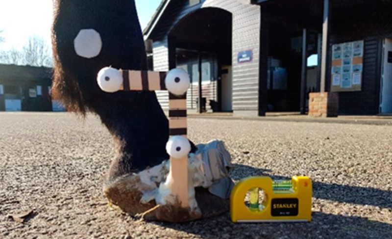 Hoof marker wand used as an aid for tracking hoof orientation through time in video footage.