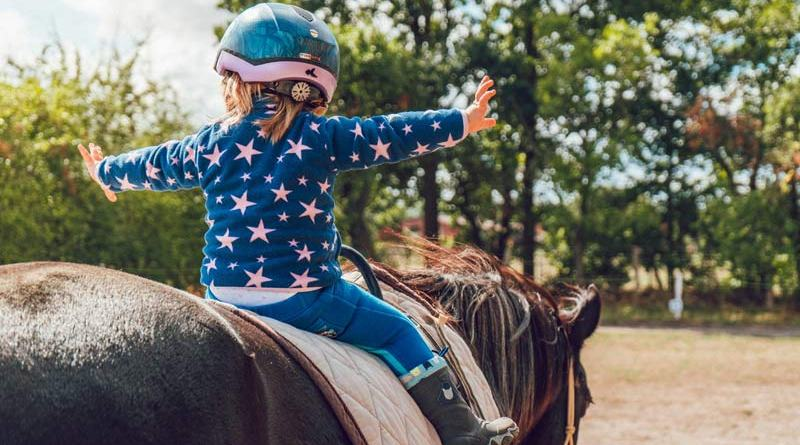 Study findings indicate there may be some nuanced considerations in selecting horses for therapeutic programs.