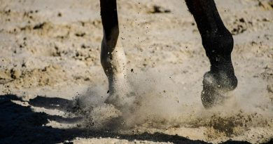 A UAE rider is fined and suspended, based on video evidence. The FEI Tribunal wonders why event officials did not take action.