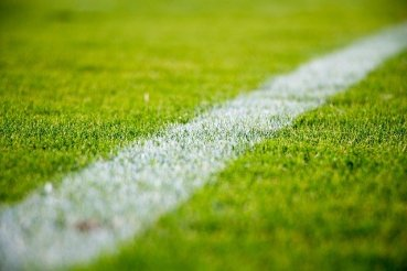 Picture of football grass that represent the best tipsters