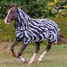 Zebradeken op paard