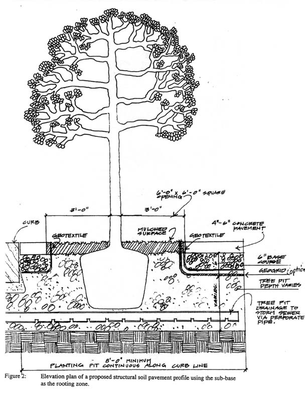 Urban Horticulture Institute, Horticulture Section