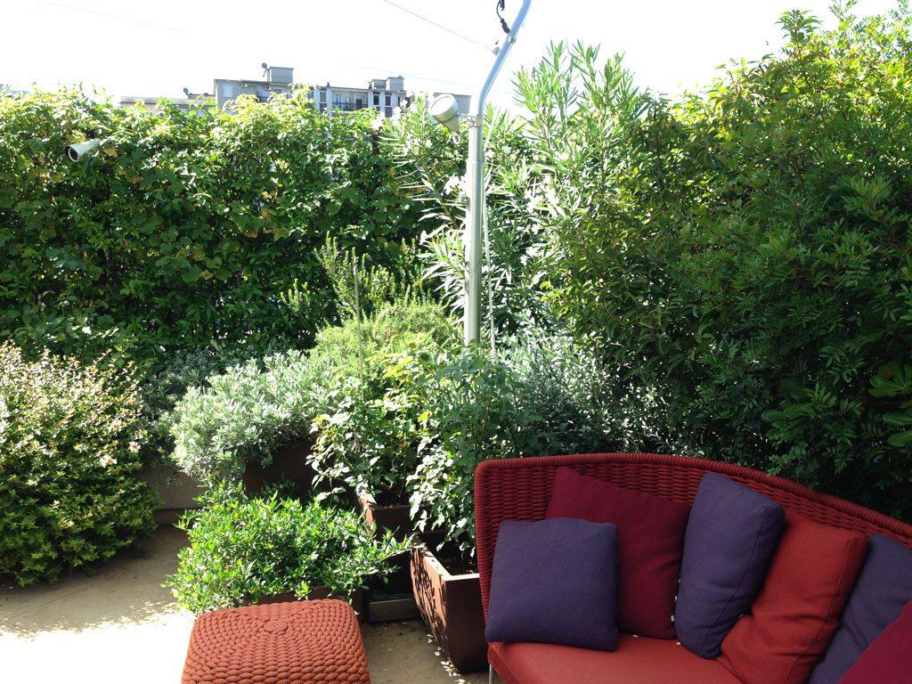 Verde e colori in terrazza a Milano  Hortensia