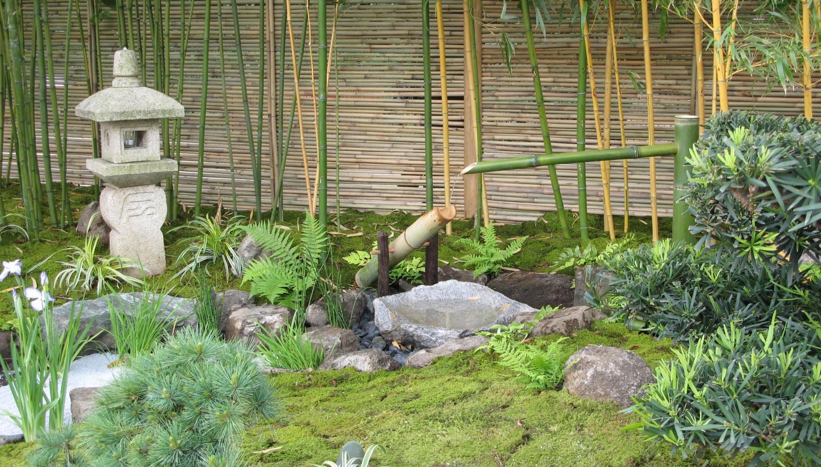jardins zen horticulture et jardins