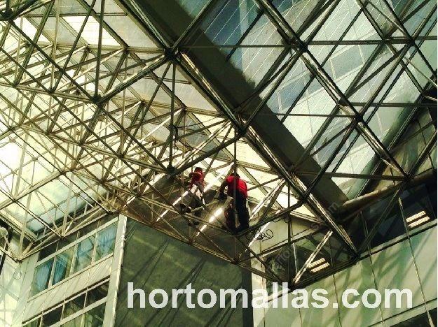 Instalación de Malla Anti-Palomas GUACAMALLAS® con ayuda de equipo de escalada y personal profesional