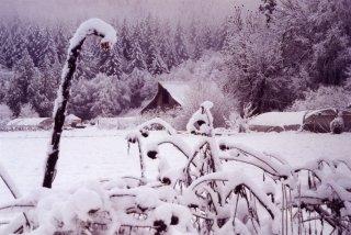 FP Farm in Snow