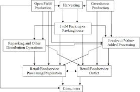 Marketing chain