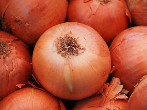 high-value vegetables-bulb onions