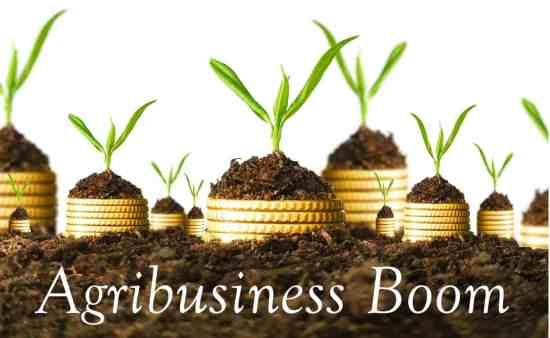 Agribusiness boom