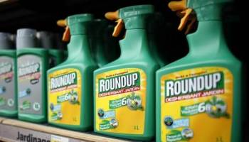 17+ Best Glyphosate Alternatives (As Voted by the Gardening