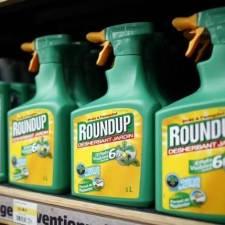 Roundup glyphosate on shelves