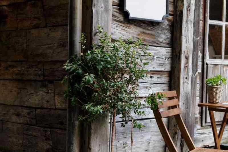 Space-Saving Ideas for a Small Garden