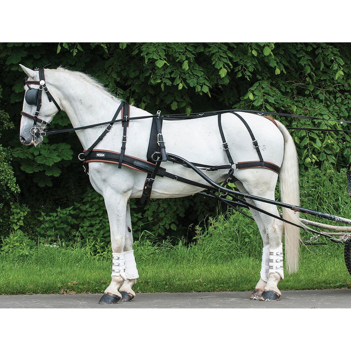 medium resolution of zilco harness single webz pony
