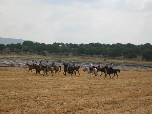 קבוצת רוכבים ערבים ויהודים בשדות צפורי