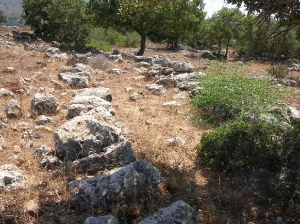 גילוי דרך רומית עתיקה בשלב ז' הושעיה