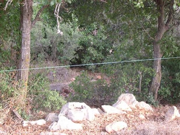 גדר בקר חשמלית - זהירות!