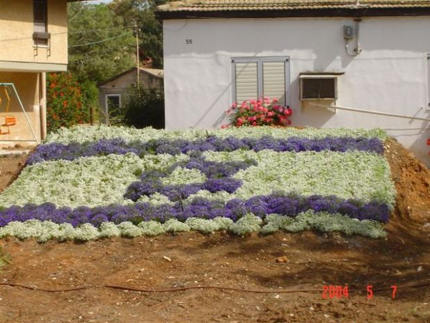 דגל הפרחים הענק של משפחת אשר במושב נחלים