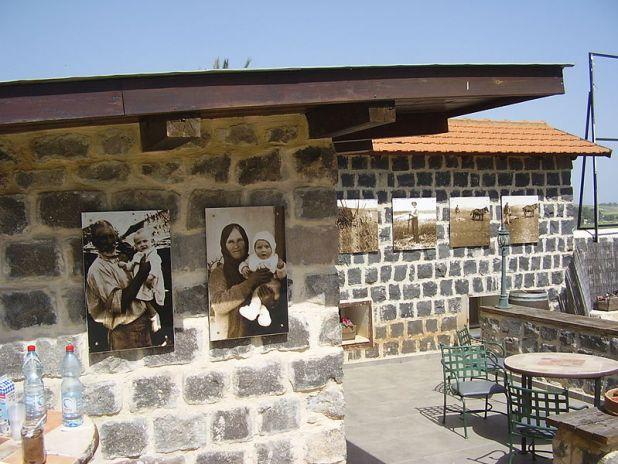 משק פרוטופופוב באילניה (סג'רה)