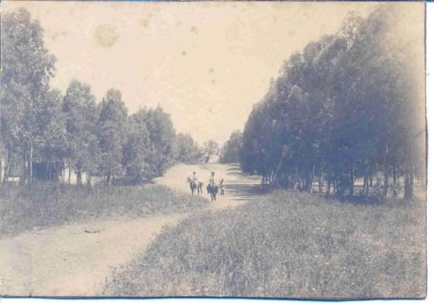 רחוב הרצל במושבה חדרה, שנות התשעים של המאה ה-19
