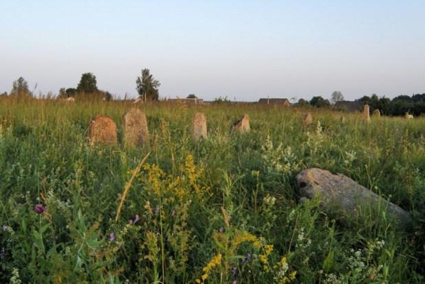 Jewish_Cemetery_of _Smilavichy צילום: Frantishak