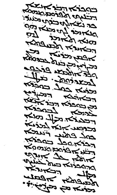 The Peshitta is the standard Syriac Bible, used by the Maronite Church, amongst others. The illustration is of the Peshitta text of Exodus 13:14–16 produced in Amida in the year 464.