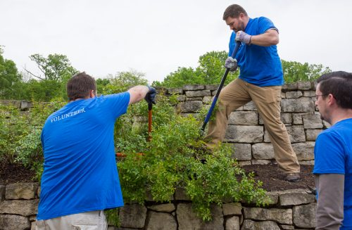 Nielsen Volunteers uproot a bush at Ohio's Hospice of Dayton.