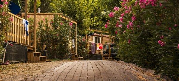 Camping Village Girasole  Firenze Italia  HostelsCentralcom  IT