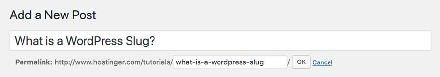 , What is a WordPress Slug?, 357 Mae Lai Services Page