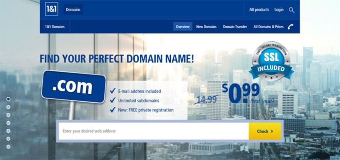 1&1 low introductory domains