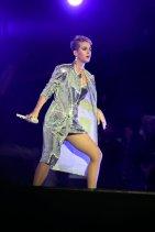 Katy Perry Legs Panties (6)