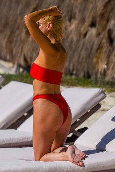 Ashley James Bikini ()