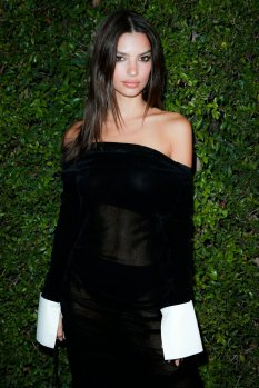 Emily Ratajkowski Sexy Sheer Dress