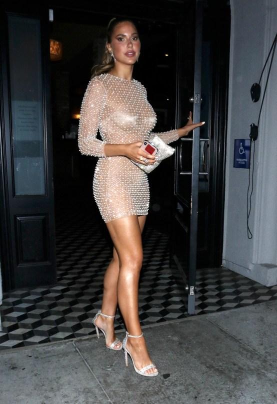 Kara Del Toro Short Sheer Dress
