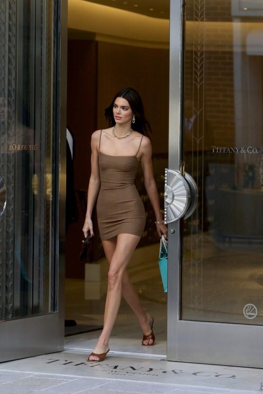 Kendall Jenner Sexy Little Dress