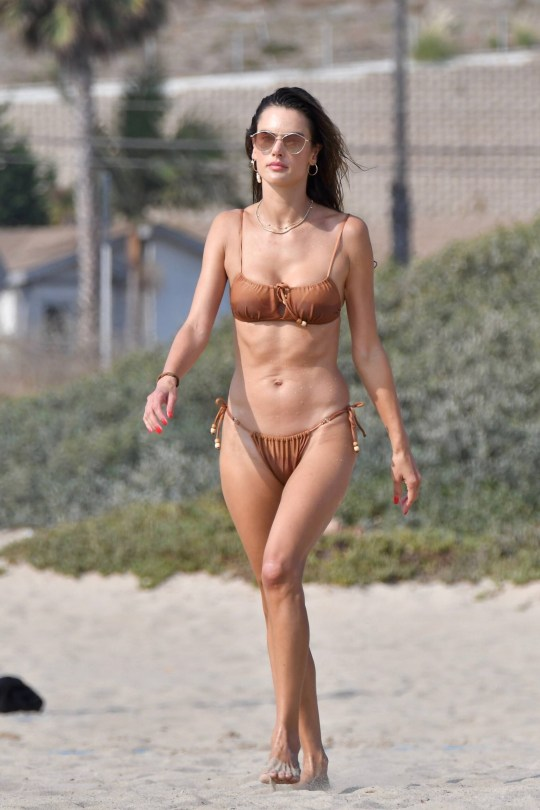Alessandra Ambrosio Hot Body In Bikini