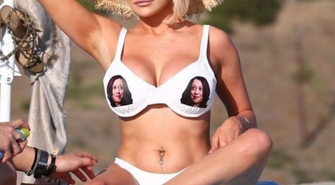 Courtney Stodden's Big Tits on Beach and Other Sexy Links!