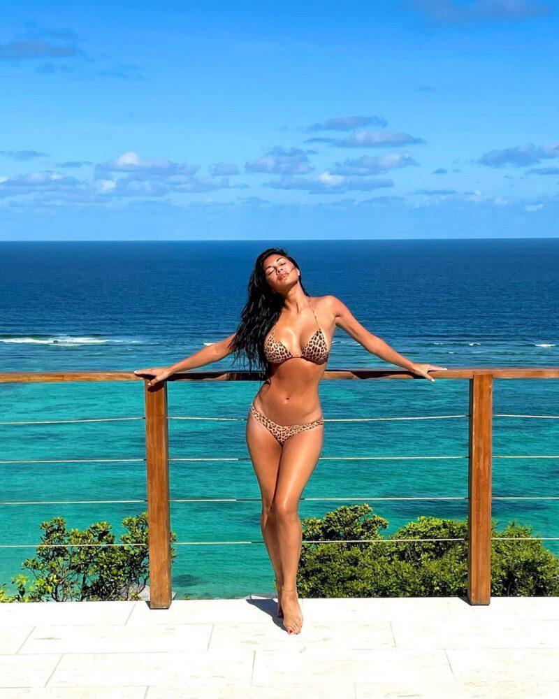 Nicole Scherzinger Fantastic Boobs In Bikini