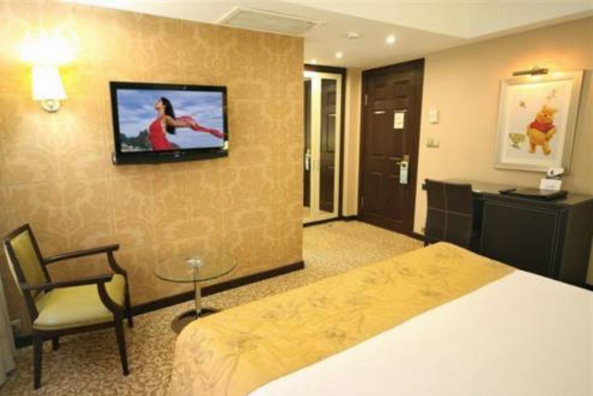 Cartoon Hotel Hotel Istanbul Turkey Overview