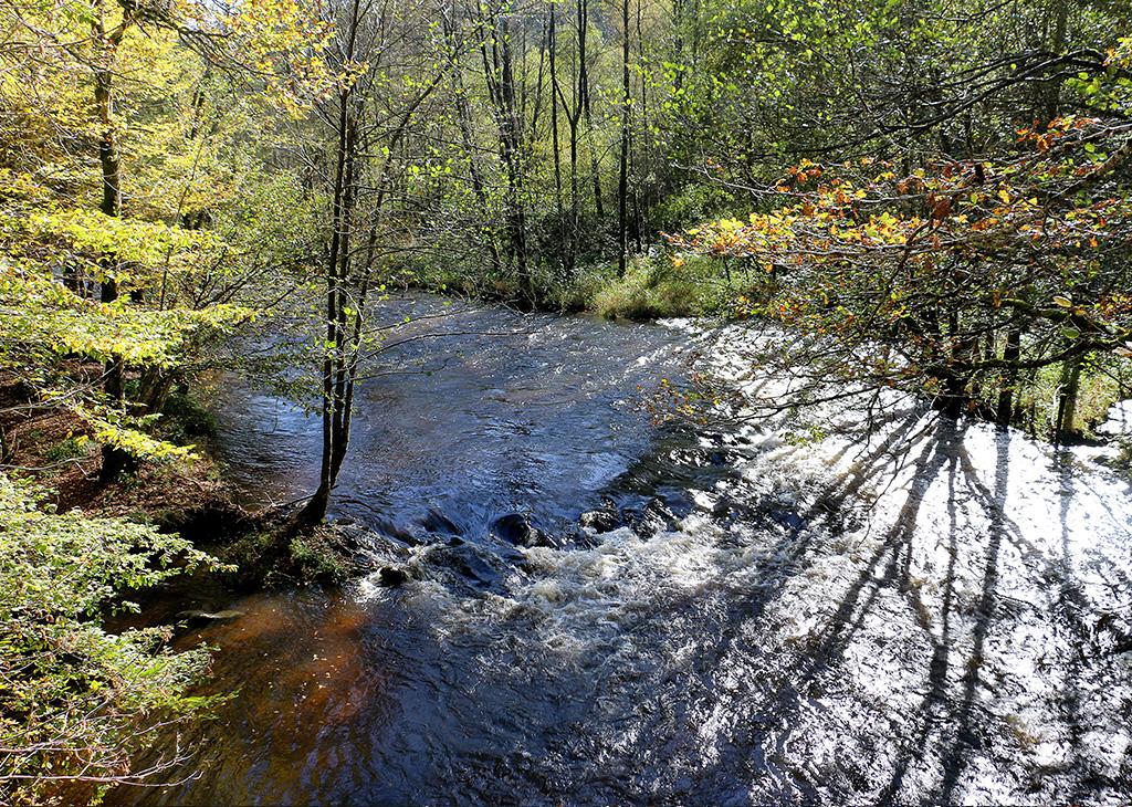 cours d'eau en Morvan