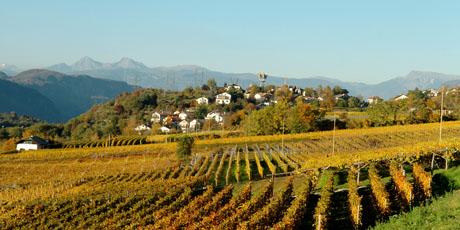 Vacanze in montagna in Alto Adige al Tenz di Montagna Ora