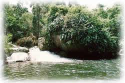 cachoeiradotarza