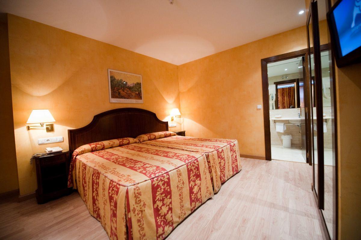 Habitaciones Habitacin doble uso individual  hotel