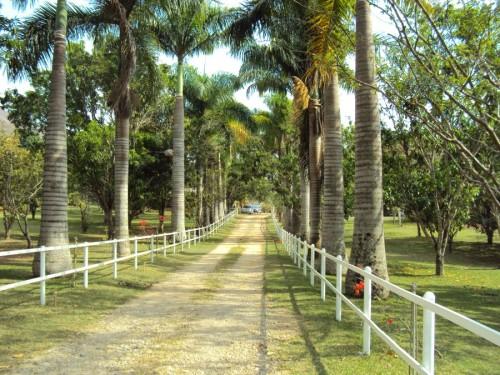 Hacienda La Calceta  Hoteles y Posadas en Bejuma Carabobo