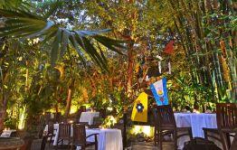hoteles-boutique-de-mexico-expresionesculinarias-cafedesartistes-vallarta33
