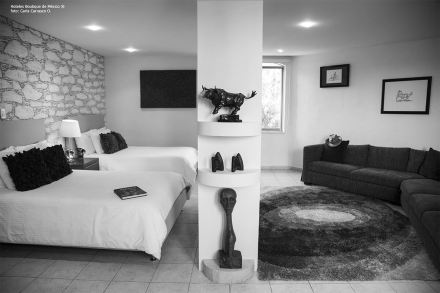 hoteles-boutique-en-mexico-hotel-casa-diamante-galeria-2